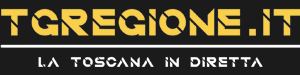 Tg-Regione